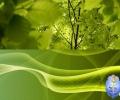 25 خلفية لمحبي اللون الأخضر للحواسيب ذات الشاشات المزدوجة