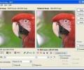 برنامج Riot لتقليص حجم الصور دون المساس بجودتها