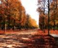 25 صورة خريفية وألوان مثيرة ومدهشة
